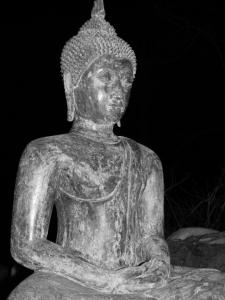 Buddha night v