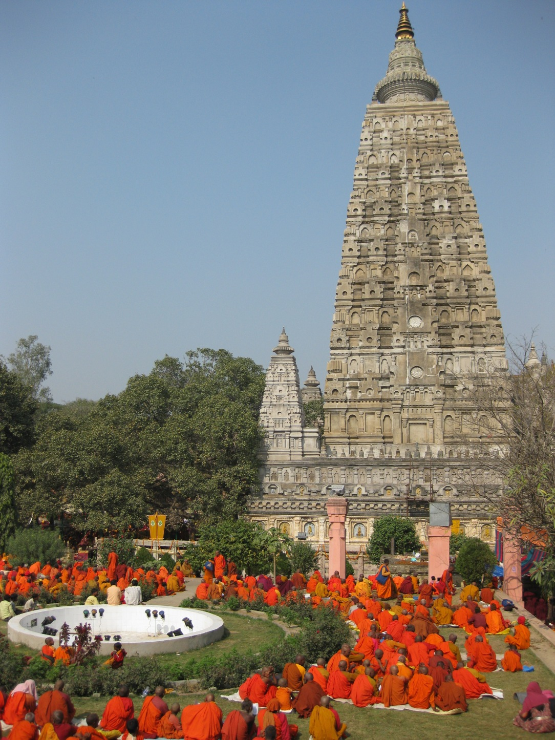 Bodhi tree temple monks