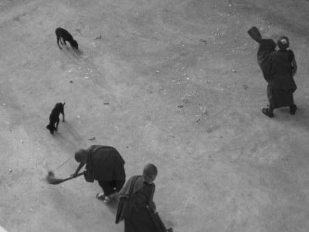 January 2009 baby monks sweeping Bodhgaya