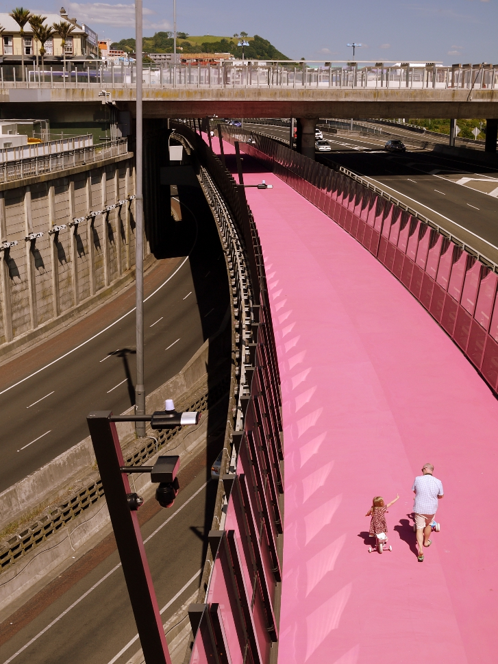 pink bike path 2