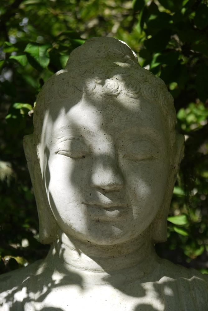 BMIMC buddha