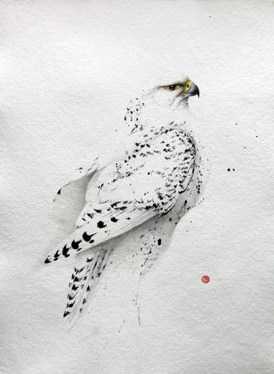 Karl Martens - Gyr Falcon