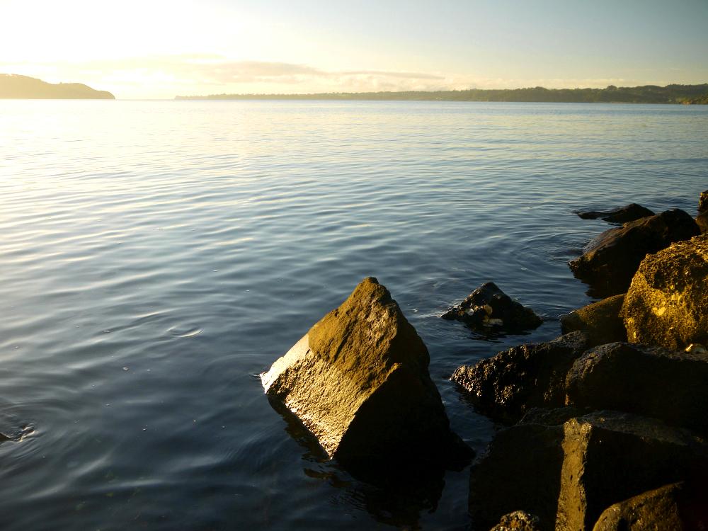 harbour foreshore rocks 6.JPG