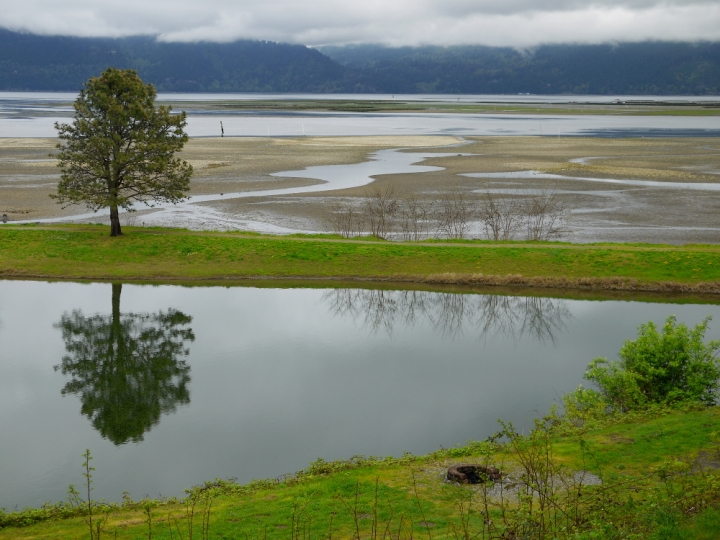 Lake Freestad reflection